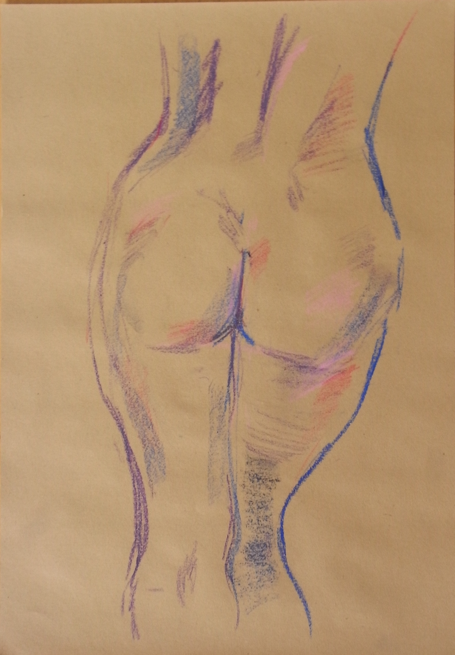 rear view of a woman's torso